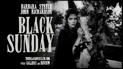 Image result for barbara steele