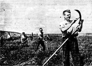 De В. Иванов (Фотохроника ТАСС) - газета «Социалистическое земледелие», # 78, воскресенье 29 июня 1941 года, Dominio público, https://commons.wikimedia.org/w/index.php?curid=1525961