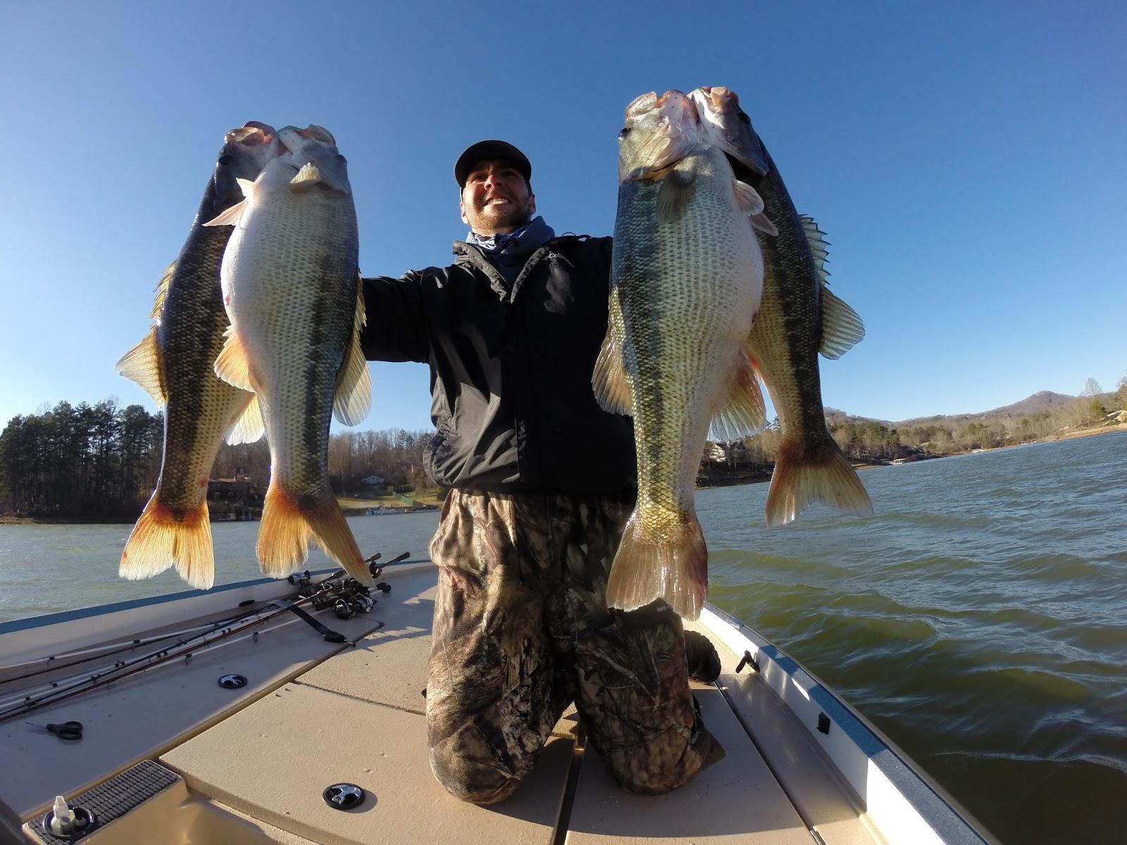 Dream Catcher's Fishing: Fishing Report- Lake Chatuge, Lake
