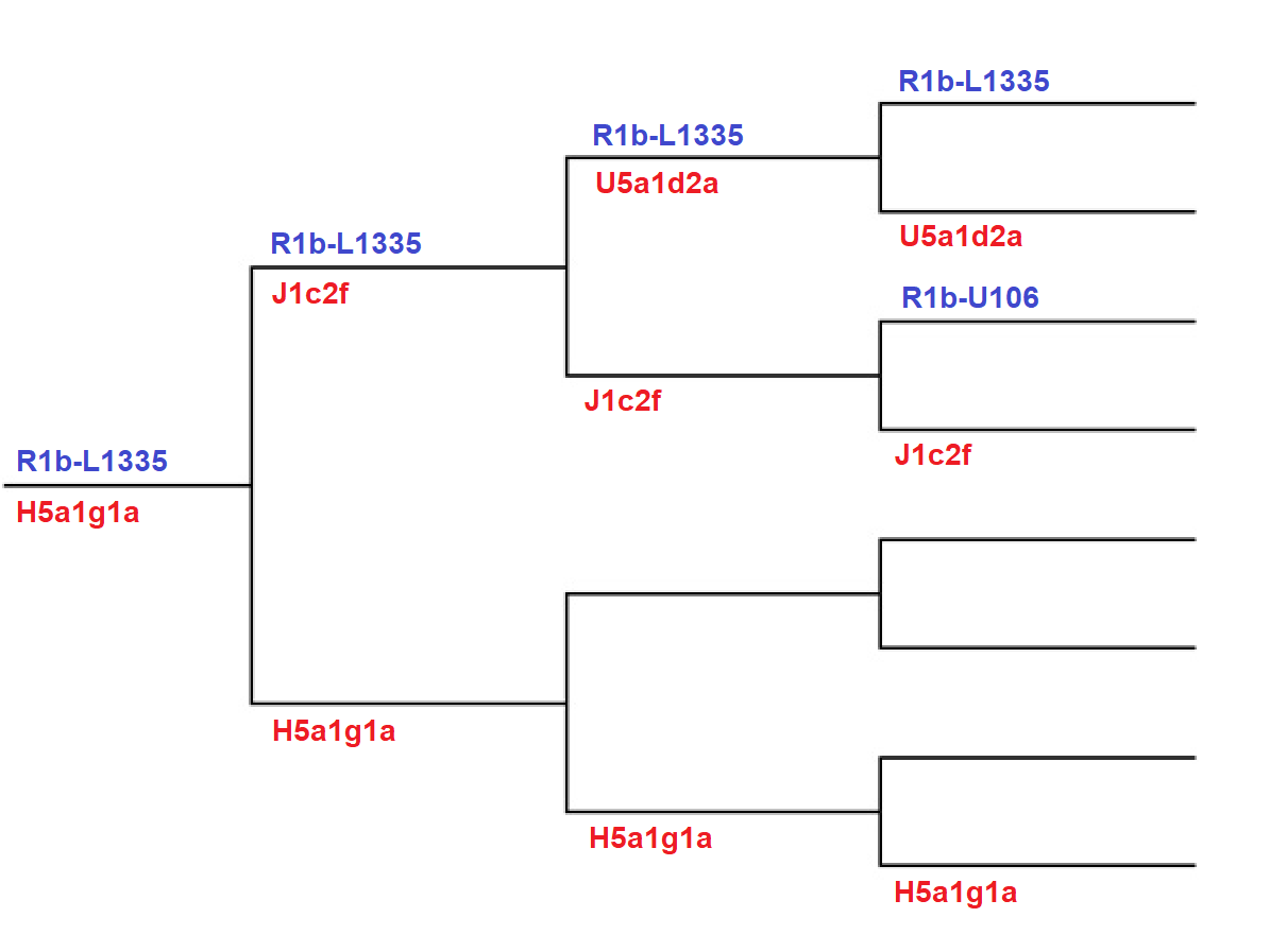 Miriam's Genealogy Corner: Haplogroups: Back to Africa