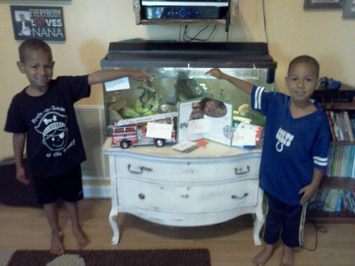 The Hawkins Family: The Turtle Tank