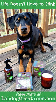 doberman mix dog with fresh wave products