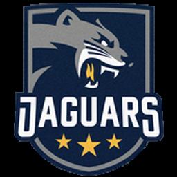 logo dls jaguar