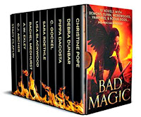 Bad Magic 10 book set