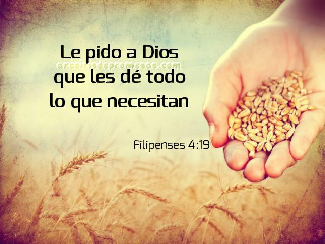 tres principios que aseguran la provisión de dios promesa de provisión reflexiones cristianas
