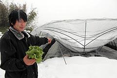 大雪被害額約7千万円 竹田市