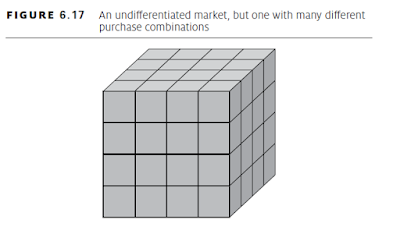 undifferentiated market