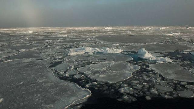 El hielo del Ártico 'rejuvenecerá', pero esto no es tan bueno...