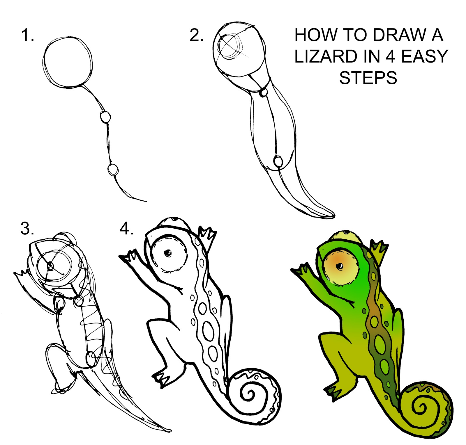 Daryl Hobson Artwork How To Draw A Lizard Step By Step
