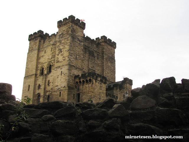 Замок Ньюкасла