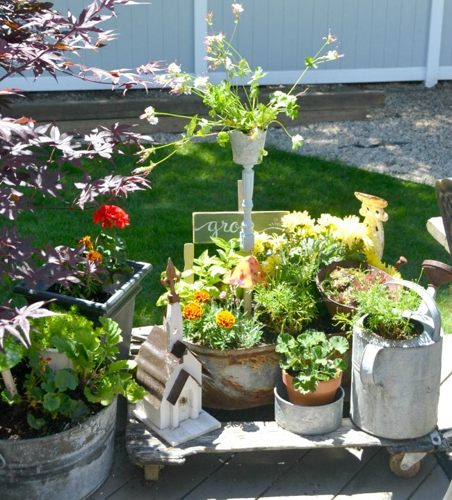 A Galvanized Spindle Planter