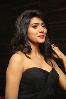 Shalu Chourasiya in spicy Sleeveless Strapless Black Top at O Pilla Nee Valla Movie Audio Launch Feb 2017 088.JPG