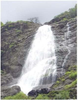 चिंचोटी, तुंगारेश्वर धबधबा धोक्याचा : तीन वर्षांत १0 पर्यटकांचा मृत्यू, तरीही ठाणे, मुंबईकरांची मोठी गर्दी