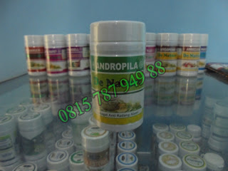 Andropila