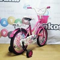 16 asagi sepeda anak