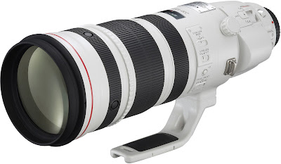Canon EF 200-400mm L IS USM telephoto lens