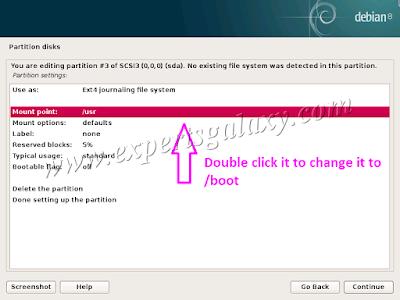 Debian Boot Partition Settings