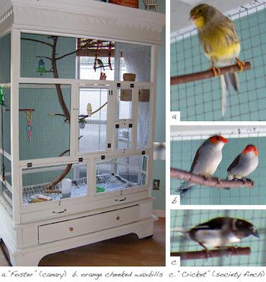 pajareras, armarios, pájaros, reciclar, bricolaje, diys