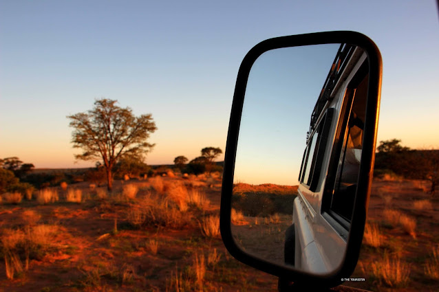 Rear view mirror of a car with sunset over a savanna landscape.