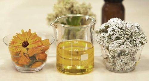 Cara Mengobati Varises Dengan Minyak Zaitun Agar Cepat Sembuh