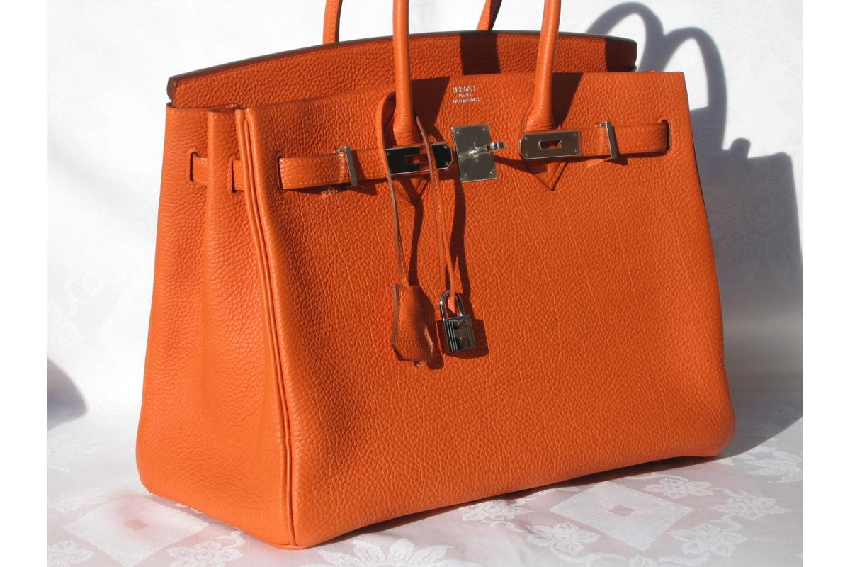 39b3a43d621 The Average Jane  STYLE FOR LESS   Hermes  Birkin Bag vs. a Lady Bug Bag