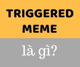 triggered meme là gì