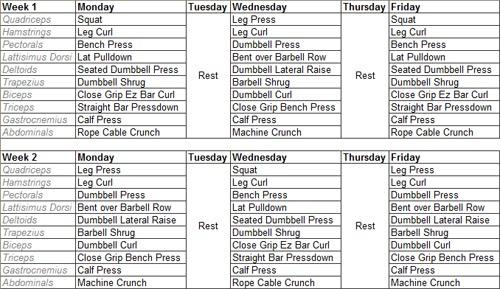 Brad Weston Fitness Hypertrophy Specific Training Hst