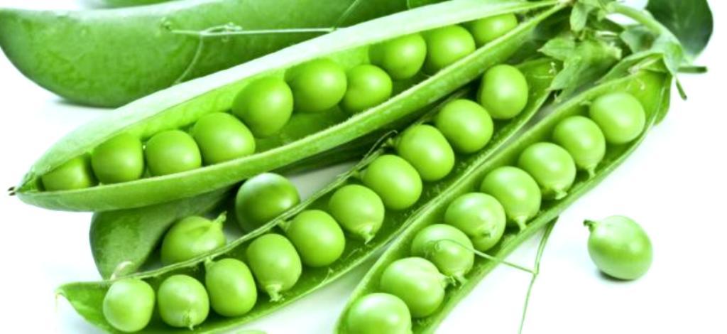 Mengenal Manfaat Kacang Tanah Untuk Diet