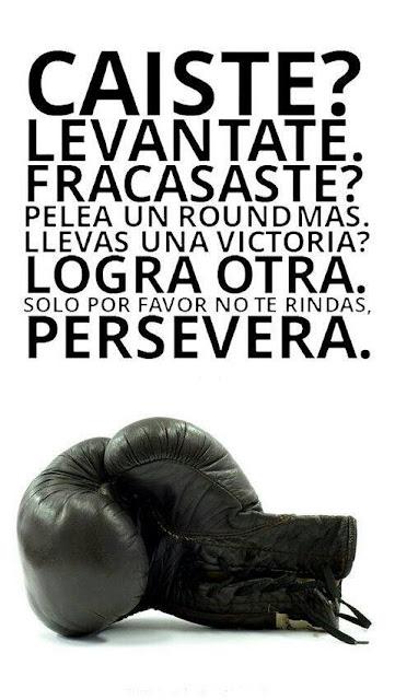 Persevera