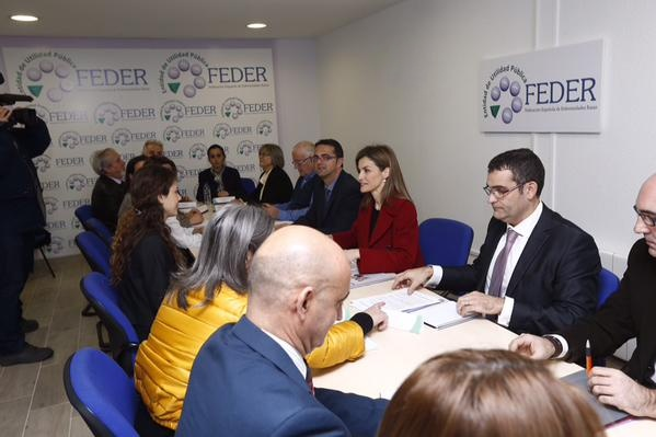 Queen Letizia attends a meeting at Rare Diseases Spanish Federation - FEDER