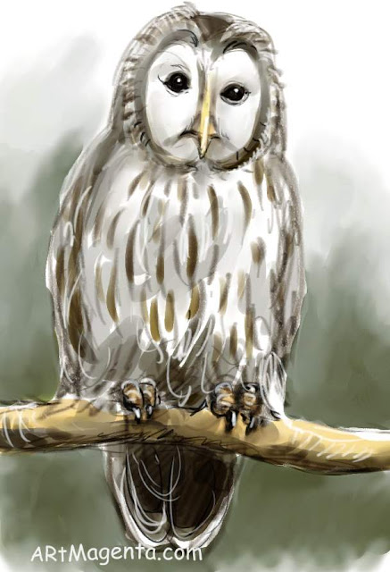 Ural Owl is a bird drawing by artist and illustrator Artmagenta