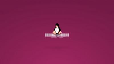 Cara instal software di Debian Squeeze Linux