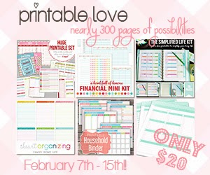 http://fromoverwhelmedtoorganized.blogspot.ca/2014/02/amazing-organizing-printables-bundle-to.html