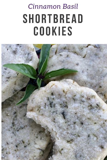 Close-up of cinnamon basil shotbread cookies with some fresh herbs.