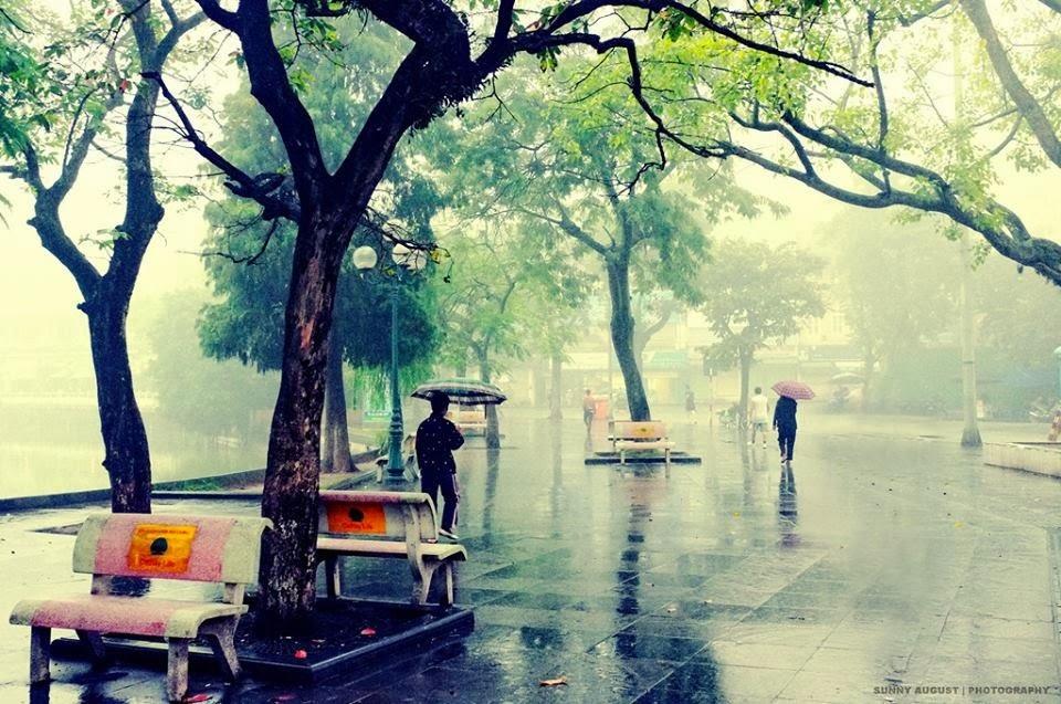 ảnh mưa mùa thu Hà Nội