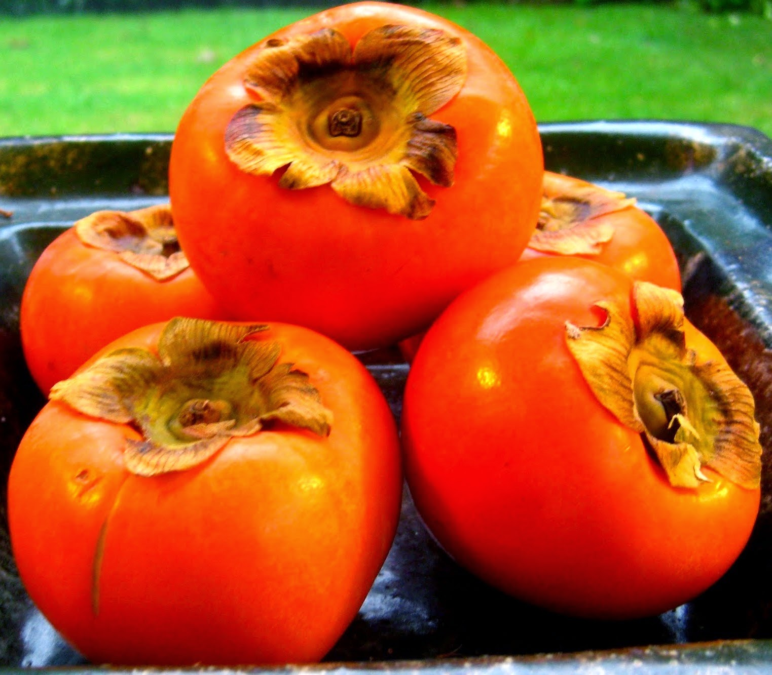 Persimmons A Tomato And Capsi Look Like Fruit