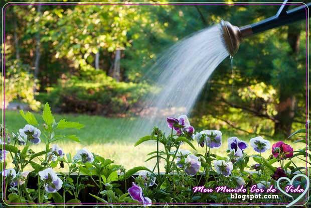 regando meu jardim