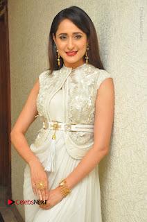 Actress Pragya Jaiswal Stills in Beautiful White Dress at turodu Audio Launch  0025.JPG