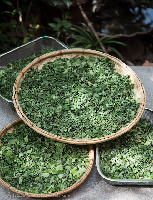 how to make moringa powder at home