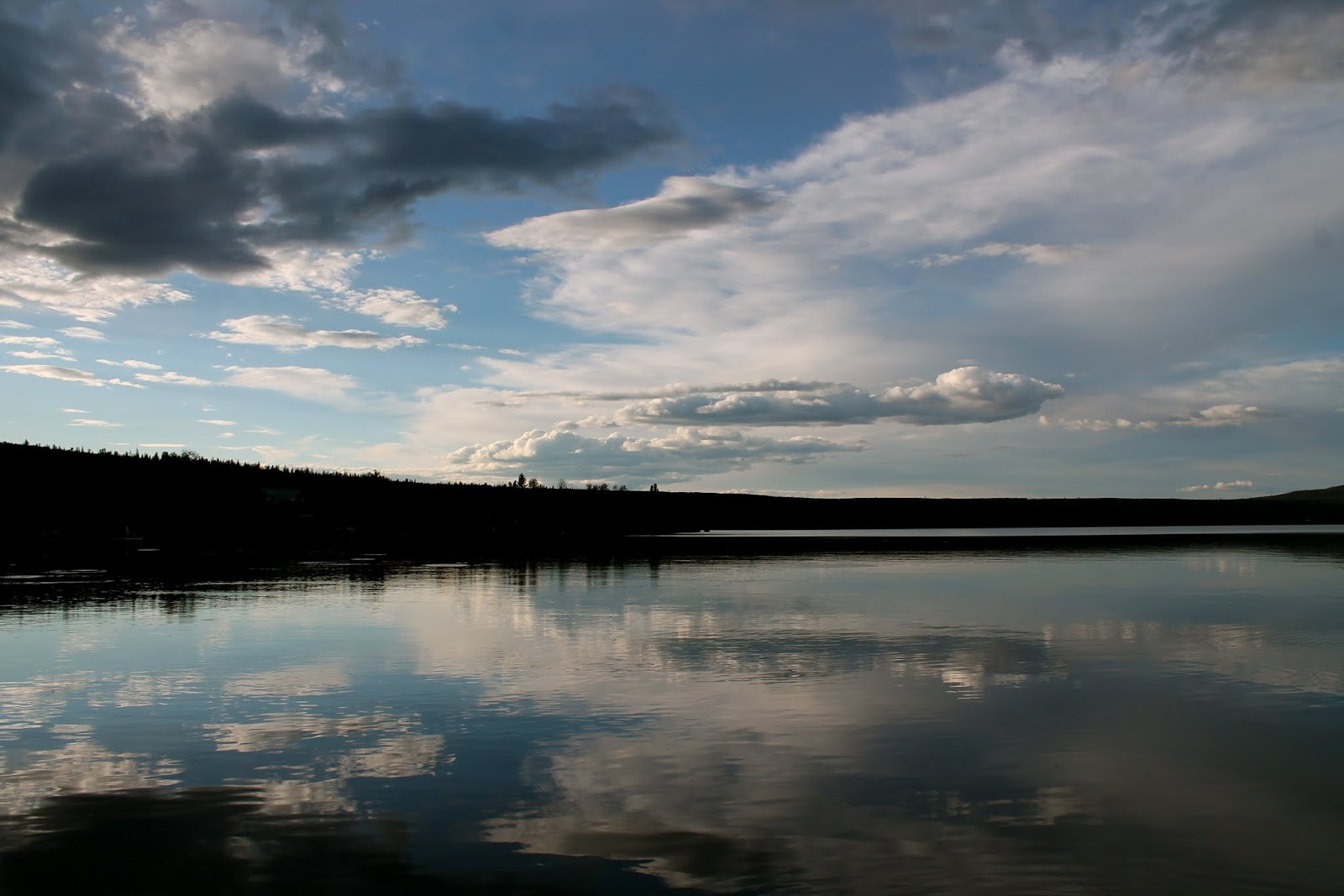 Puntzi Lake (Le petit requin)
