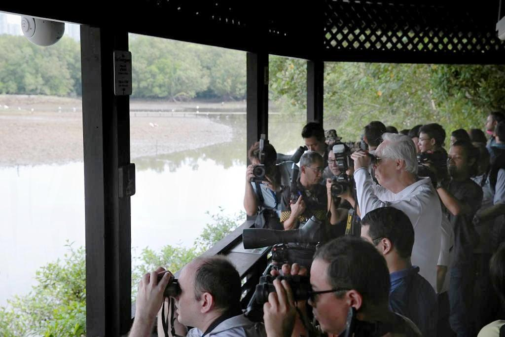 ESM Goh Chok Tong (centre, in white) uses a binoculars to observe wildlife at Sungei Buloh.