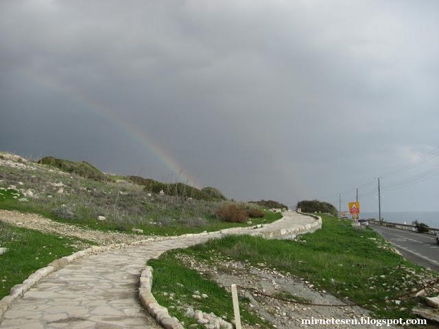 Аматус, Кипр