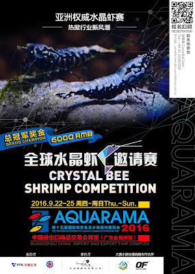 http://www.aquarama.com.cn/en/competitions/bee-shrimp-competition/