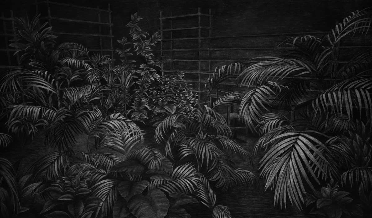 13-Plants-Levi-van-Veluw-Black-and-White-Monochromatic-Charcoal-Drawings-www-designstack-co
