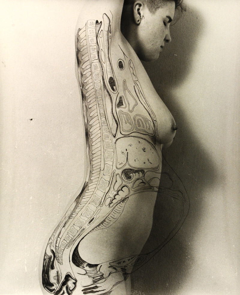 Dissections by Angela Christine Smith Combine Photography, Ink and A Sense of Self - if it's hip, it's here