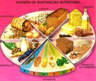 Imagen de División de Sustancias Nutritivas a colores