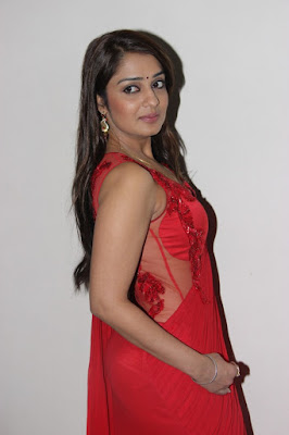 Nikitha Hot Saree Stills