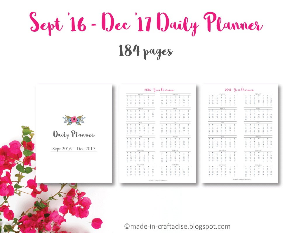 2016 - 2017 Daily Planner Printable PDF