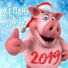 Приметы в год желтой земляной свиньи для привлечения финансовой удачи.