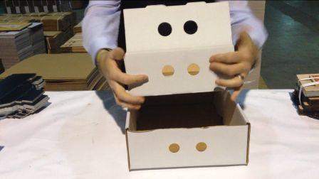 cajas de carton para kg